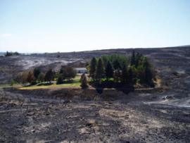 House spared from wildfire