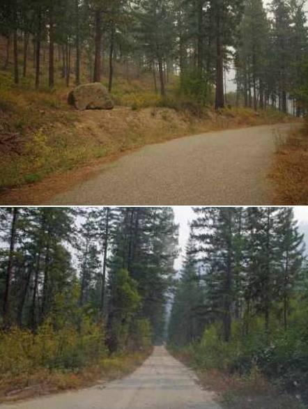 firewise comparison photos