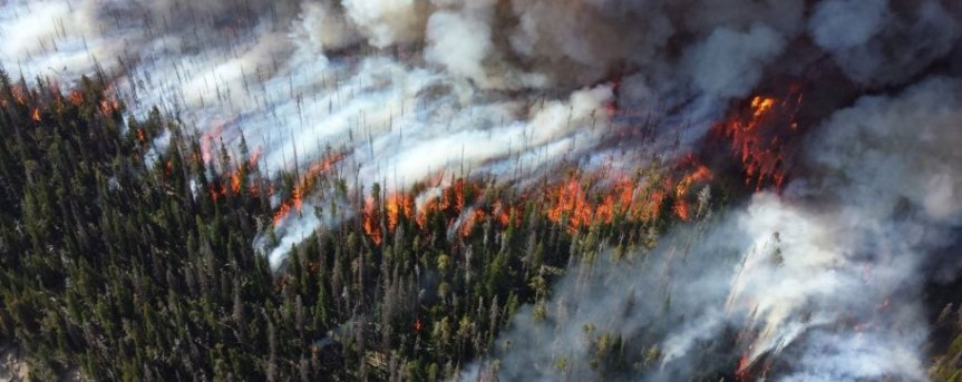 wildfire aerial image courtesy of WSU Extension