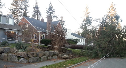 Spokane windstorm-November 2015