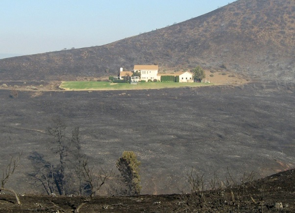 home survived wildfire
