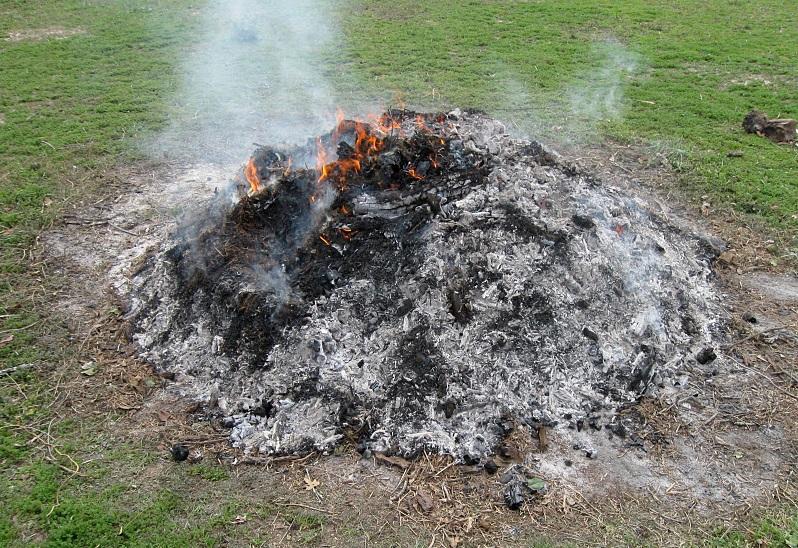 Small burn pile.