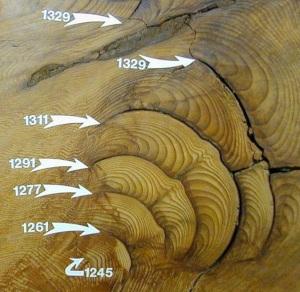 giant sequoia burn scars
