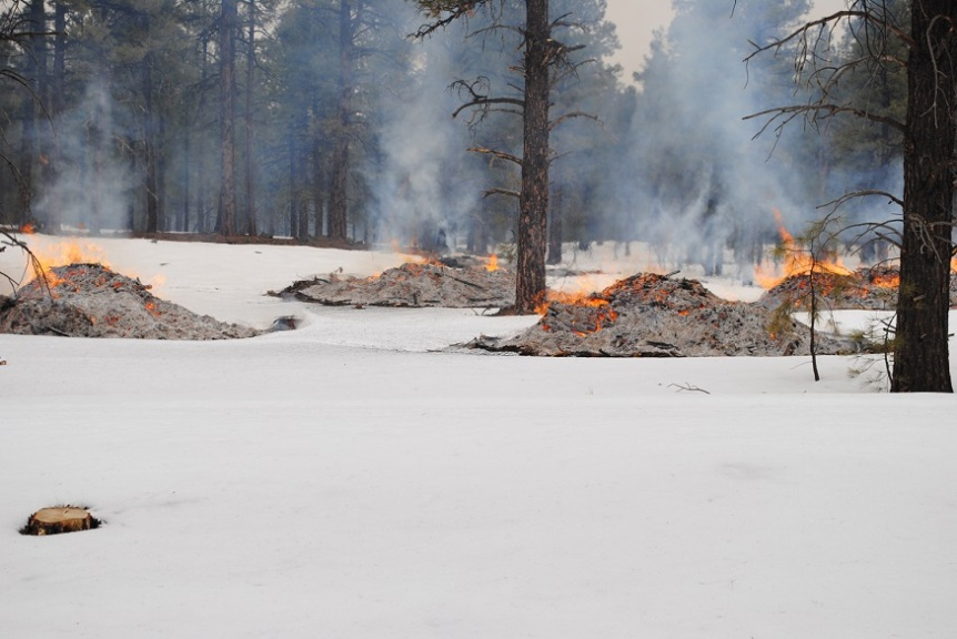 winter-time burn piles
