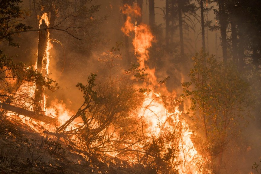 Wildfire Corner:  2018 Wildfire Season in Review