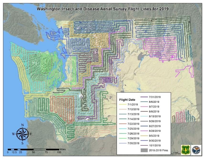 2019 aerial survey flight lines