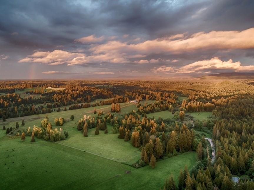 Cascades to Coast Landscape Collaborative to Launch Conservation Program ExplorerTool